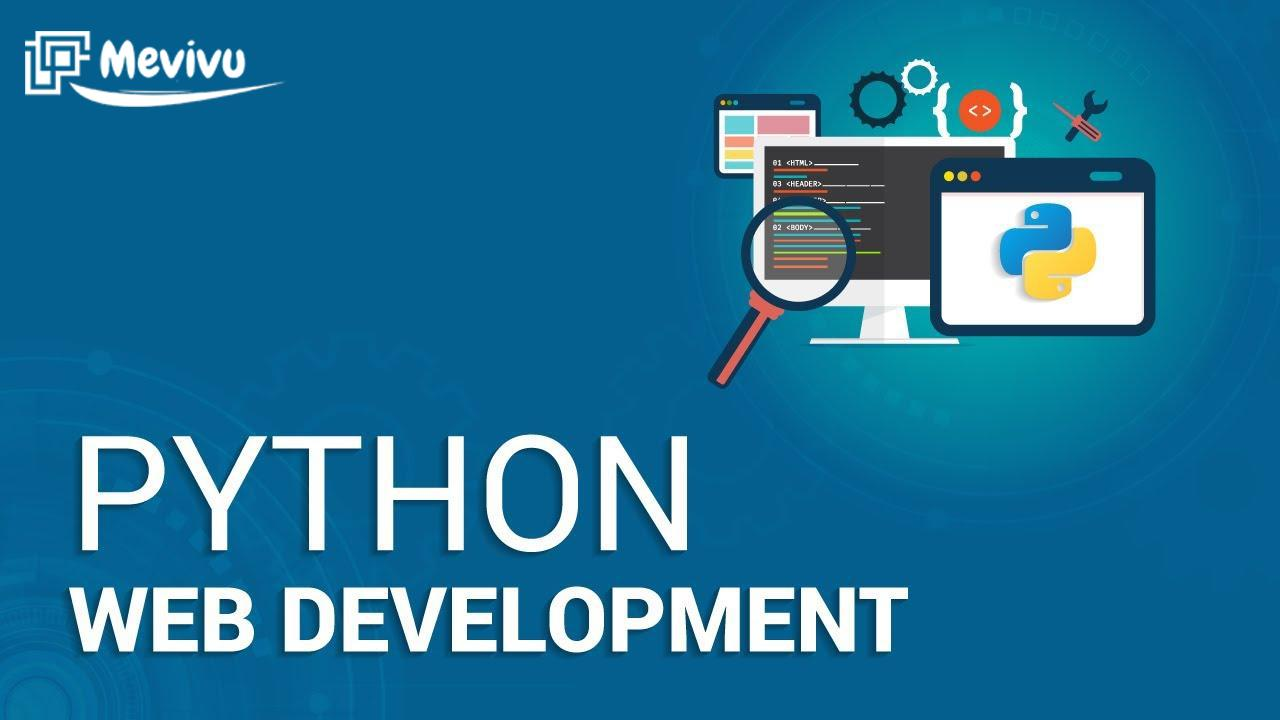 dịch vụ thiết kế website python